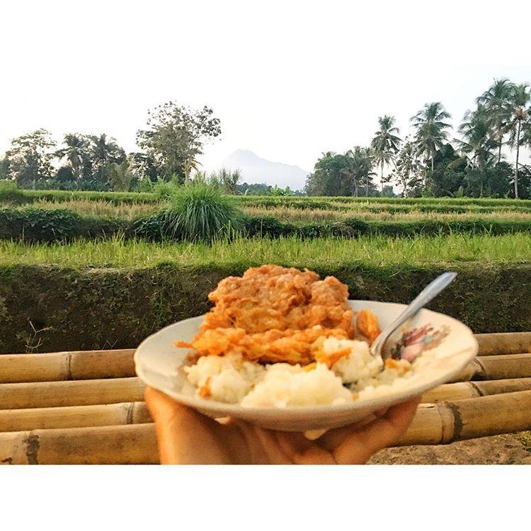 Warung Kopi Klotok: Tempat Menikmati Makanan Khas Jawa di Tengah Asrinya Persawahan