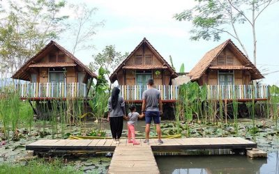 Desa Wisata Boro Jogja dan 5 Aktivitas Seru Yang Bisa Dilakukan